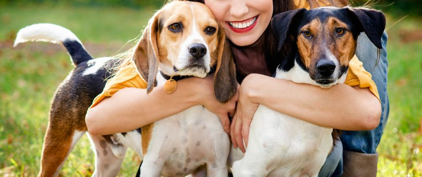 Will Puppy School Help with Socialization?